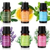 ACEVIVI Ätherisches Öl Essential Oils 100% Pure Therapeutic Grade 6 Set(10ml) -